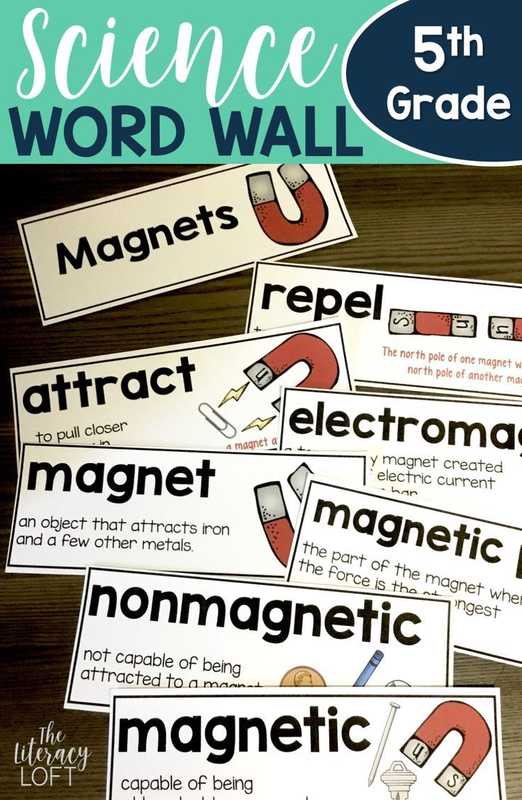 Science Vocabulary Word Wall {5th Grade} | Best of Teachers Pay