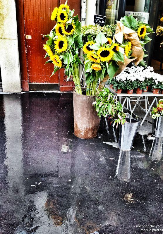 ParisMobile http://www.ancaenache.com/blog