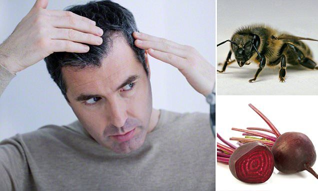 From bees to beetroots, we reveal the future of hair loss cures