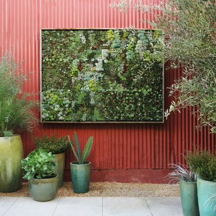Wall of succulents - so fun.
