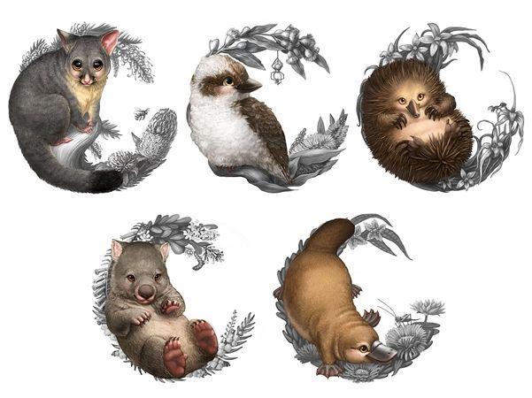Watermark's Elise Martinson - Baby Australian animal illustrations for The Perth Mint's Bush Babies coin series. (illustration, art, digital, animal, possum, kookaburra, echidna, wombat, platypus, coin, Australia)