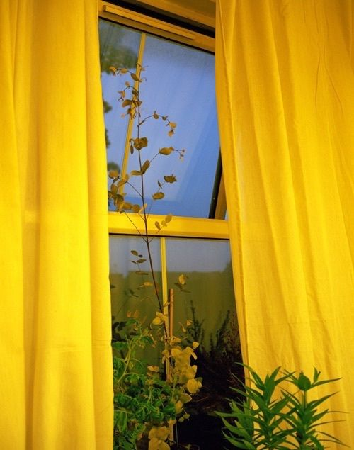 Imagem de yellow, window, and aesthetic