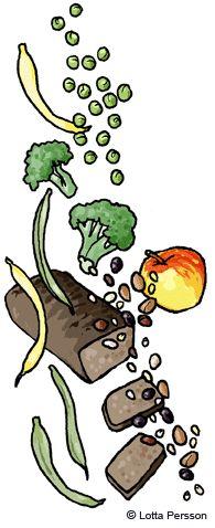 Bild på bra mat vid förstoppning - grovt bröd, broccoli, äpple, ärtor med mera
