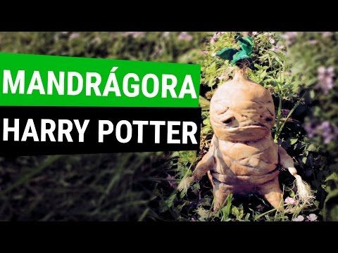 M s de 1000 ideas sobre manualidades de harry potter en - Mandragora decoracion ...