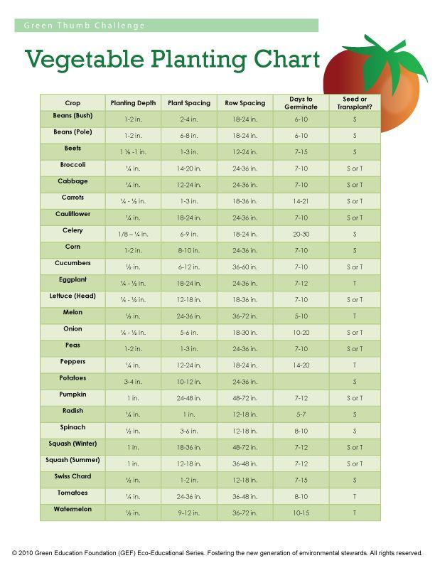 Veggie Growing Chart