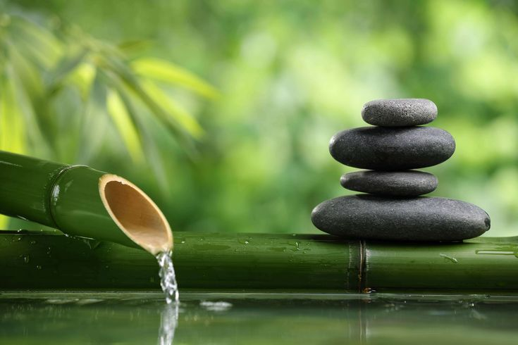 Remember to relax and not drown in the digital world. ~ETS #zen #relax #bamboogarden