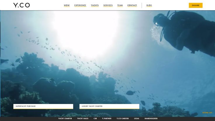 Video background websites