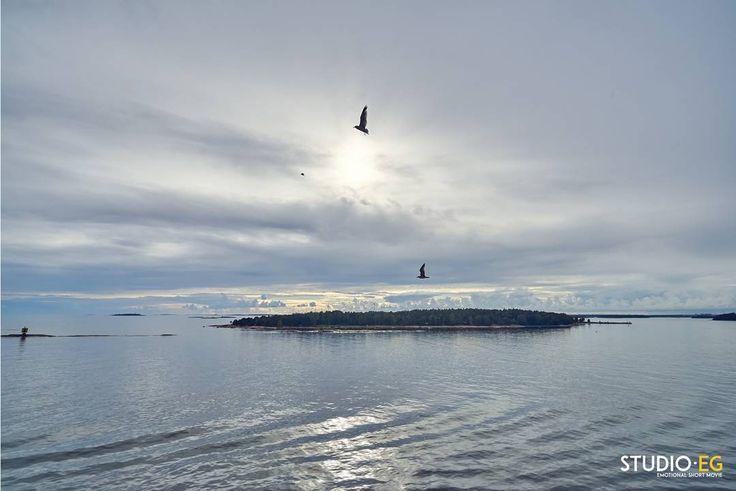 [DAY 3 - Let's start once again]  Follow the full story on @studioeg @emagiannini @rossellabenedetto  studio-eg.com  #studioeg #sky #sunrise #bluesky #baltic #balticsea #finland #baltics #loveboat #nature #sun #loveboats #discover #cruise #travel #sunset #seaside #traveling #jj_forum #fantastic_earth #discoverglobe #photographyeveryday #art #natgeoyourshot #orange #natgeotravelpic #horizon #warm #silhouette #all_sunsets