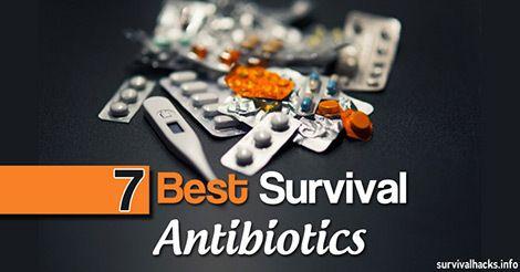 7 Best Survival Antibiotics For Your Survival Kit