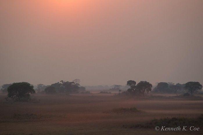 Beautiful nothingness on the Busanga Plains