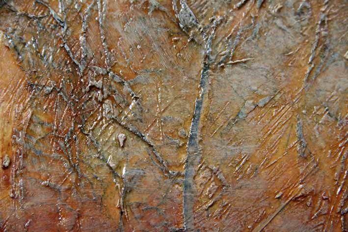 Ian Murphy  Texture Explosion series Tactile paint 1