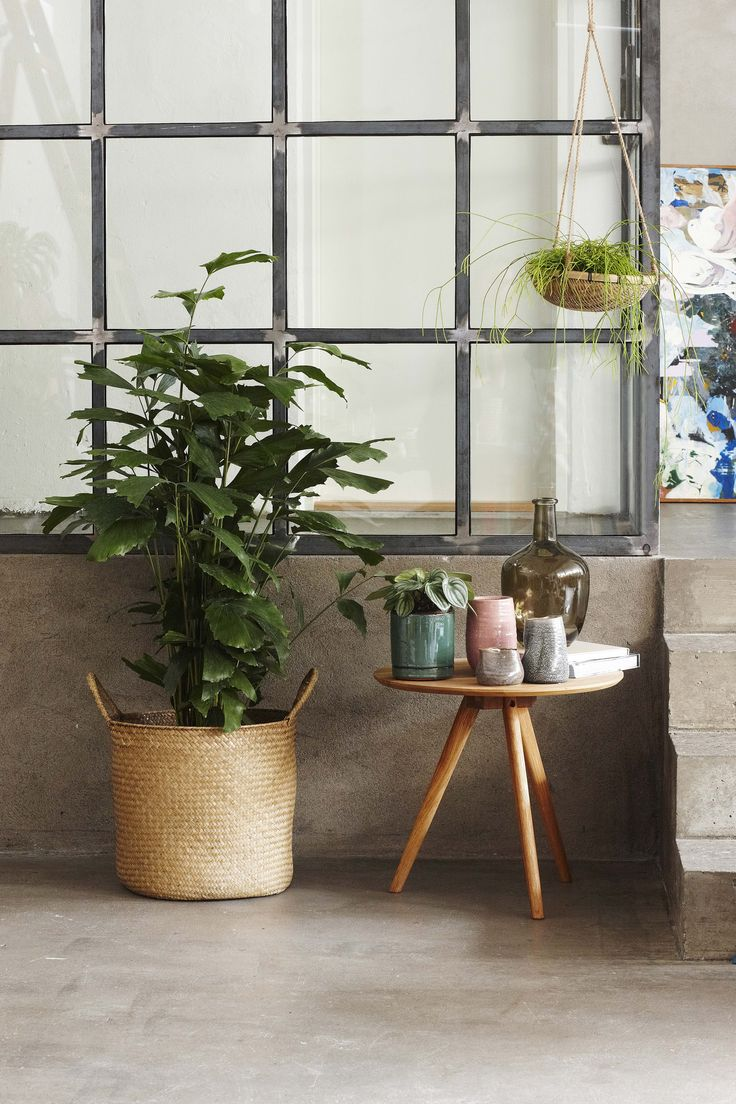 New Interior Collection.  Use a grass basket for storage or for your plants.  Available in stores from 10 March 2016. #grenehome See all the news: www.sostrenegrene.com