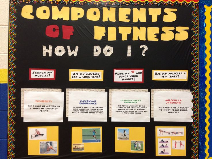 Altered bulletin board!  Components of Fitness!