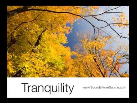 Tranquility.  Poems by Mikael (Archangel Michael) channelled by Sheila Kennedy