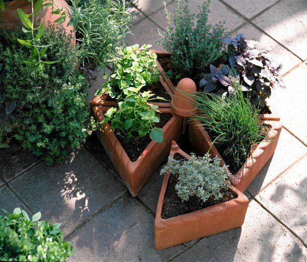 Zioła na balkonie. Jak założyć ogródek ziołowy na balkonie.