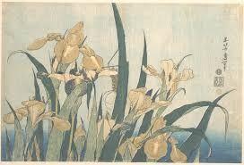 IRIS Katsushika Hokusai- tardo 1820- stampa- The Francis Lathrop Collection, Purchase, Frederick C. Hewitt Fund, 1911