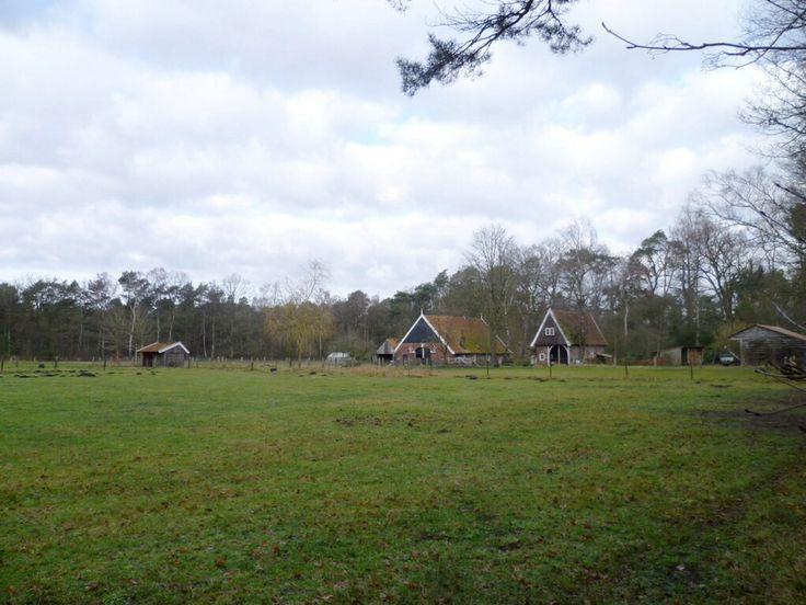 2014-02-23 Mooie oude twentse boerderij met fraaie schuur