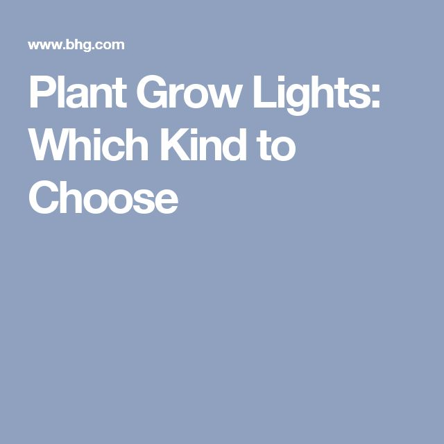 Plant Grow Lights: Which Kind to Choose