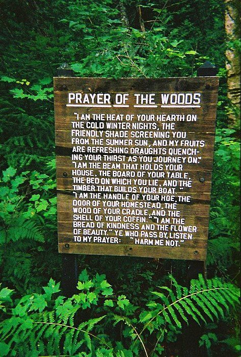 prayer of the woods.