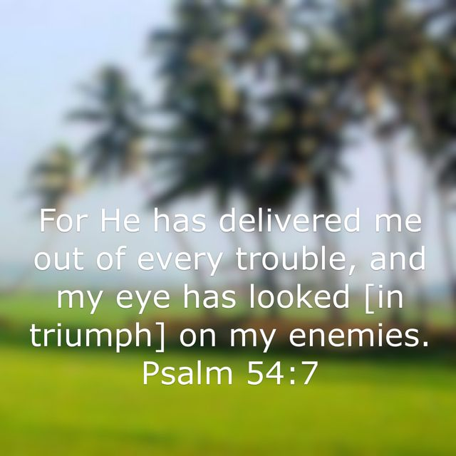For He has delivered me out of every trouble, and my eye has looked [in triumph] on my enemies. (Psalm 54:7 AMP) Have A blessed day n Jesus Christ..May God bless you abundantly..