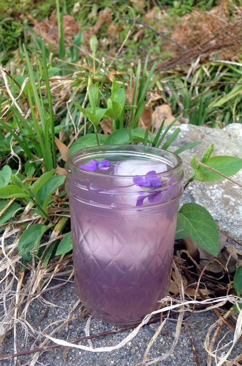 Refreshing Violet Lemonade - Herbal Academy Blog
