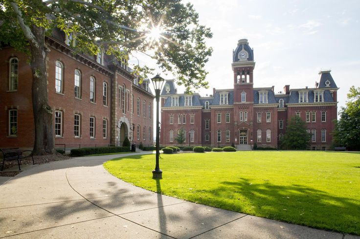 All fraternities and sororities at West Virginia University were suspended Thursday after a freshman was found unconscious and not breathing inside a fratern...