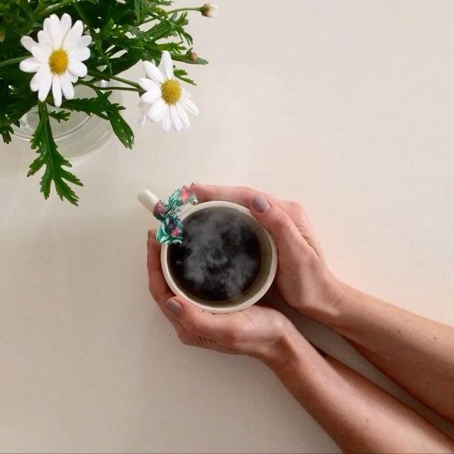 Margaridas do jardim e café acabado de fazer.  BOM dia! #omeucafédamanha #mymomentwithflowers #videosabc ☕️#annawesterlundceramics