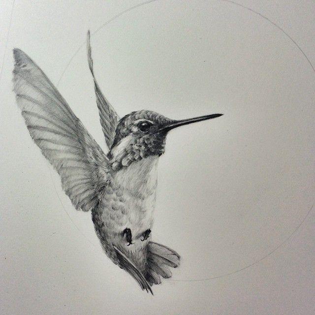 Tattoo Trends – Hummingbird Tattoo Black and on Native American Hummingbird Tattoo Design In Rea…