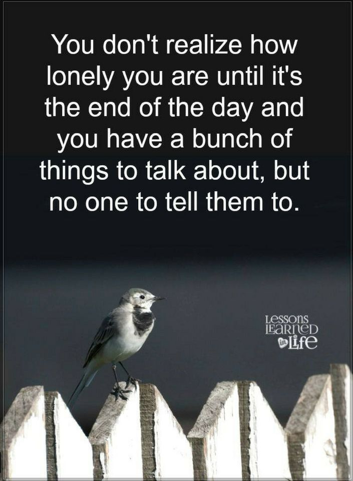 Quotes You Dont Realize How Lonely You Are Until Its The End Of