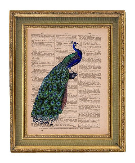 Bright Peacock Vintage Dictionary Print By Papergangsterprints