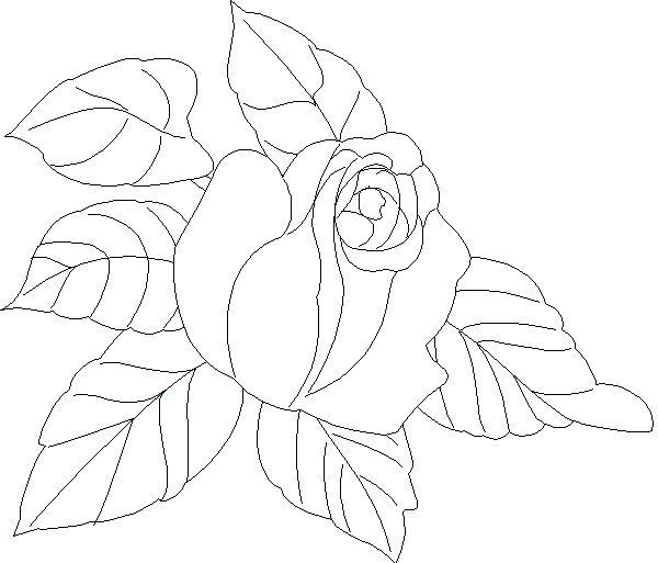 Blumen Vorlage 581 Malvorlage Vorlage Ausmalbilder Kostenlos, Blumen Vorlage Zum Ausdrucken