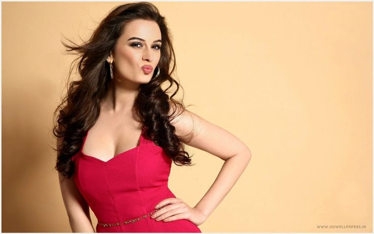 Evelyn Sharma Actress Wallpaper | evelyn sharma actress wallpaper 1080p, evelyn sharma actress wallpaper desktop, evelyn sharma actress wallpaper hd, evelyn sharma actress wallpaper iphone