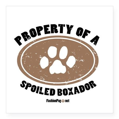 Property of A Boxador Square Sticker