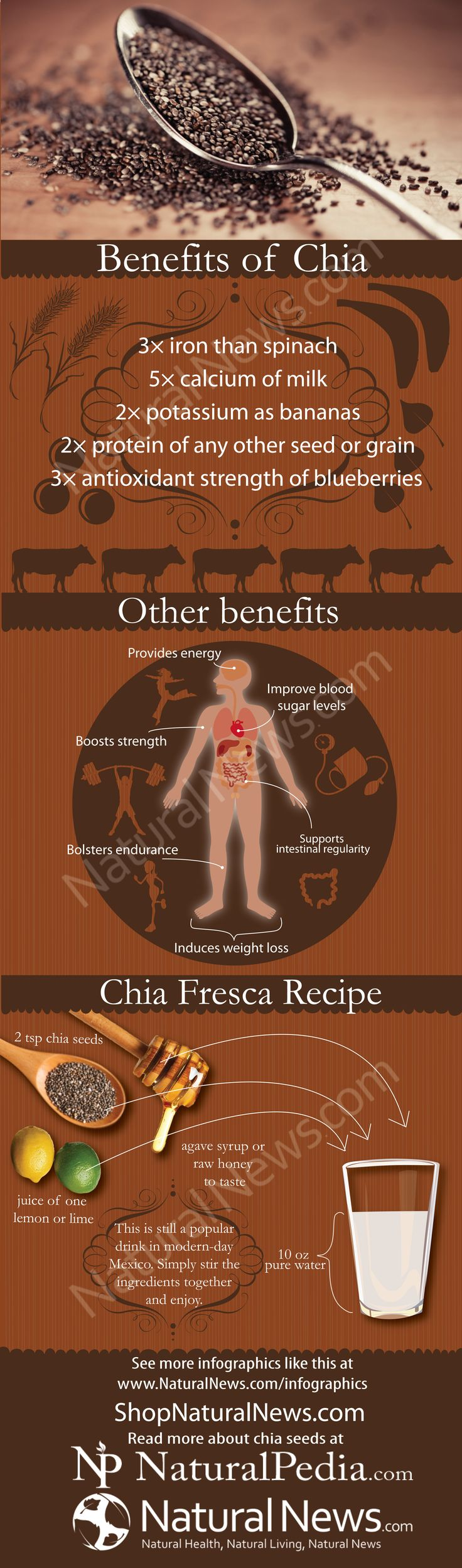 Chia seeds are the ultimate survival food for long-term storage