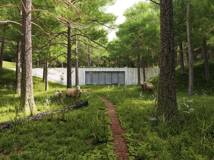 Do you need architectural visualization and rendering services? Get dozens of offers in no time, collaborate with the best artists online and get the best price for you!! #easyrender #architect  #architecture #render #visualisation #lovearchitecture #sustainable #eco #cabin