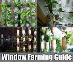 Vertical Window Farming (tutorials, guides, plans, etc.)