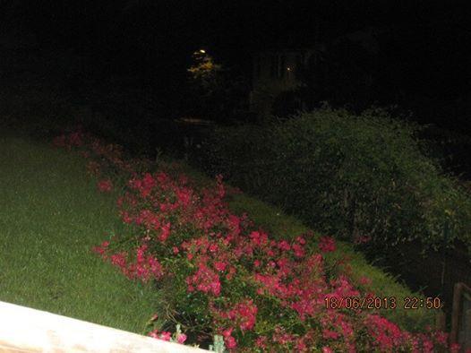 roseto by night