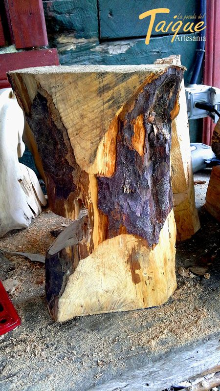 Madera Nativa de Mañio en Proceso de tallado y corte
