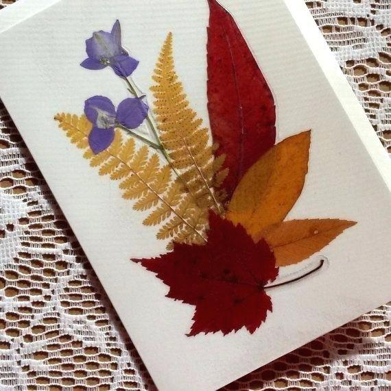 Открытка из сухих цветов листьев, анимашки