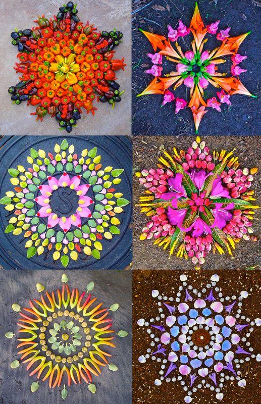 DELICATE MEETINGS. Flower Mandalas   Kathy Klein.
