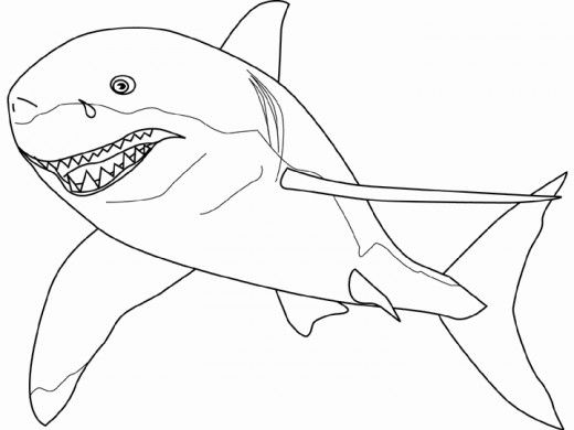 10 best The art of self promotion Shark illustrations research