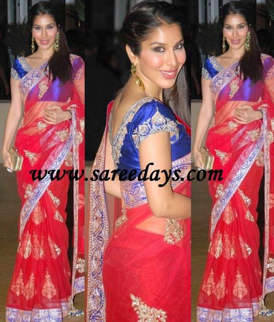 Latest Saree Designs: sophie choudhary in red designer netted saree at genelia ritesh wedding reception