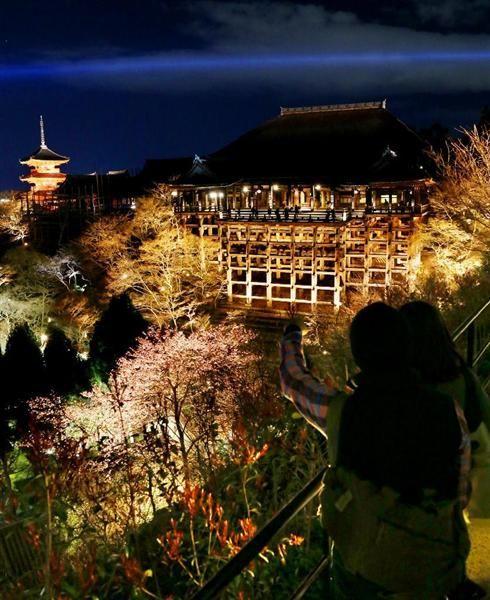 京都市東山区の清水寺で25日、春の夜間特別拝観(26日~4月10日)で行われるライトアップの試験点灯があり、境内や近接する山々の桜約千本が柔らかな光に照らし出さ…