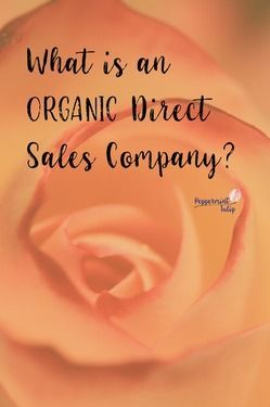 What is an Organic Direct Sales Company? What makes NYR Organic an organic company... beyond the certified organic ingredients. #NYROrganic #organic #directsales #organicdirectsales