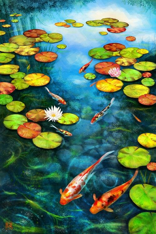 406 best fish and pond art images on pinterest koi fish for Koi carp pond depth