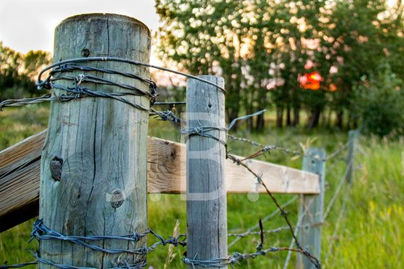 Country Fence Digital Download barbed wire by CanvasingtheOutdoors