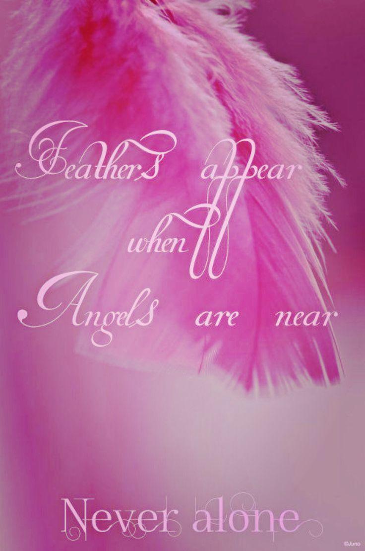 ∆ Angels...Thank you angels.