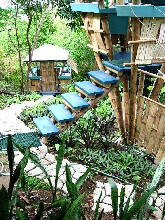 treehouse masters | Fotografías de Tropical Treehouse, Rincón - Fotos de Hotel rústico ...