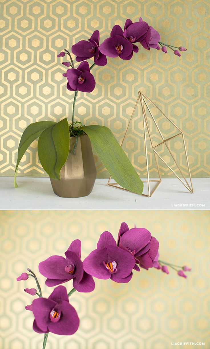 #PaperFlower You can make this! Pattern and tutorial at www.LiaGriffith.com