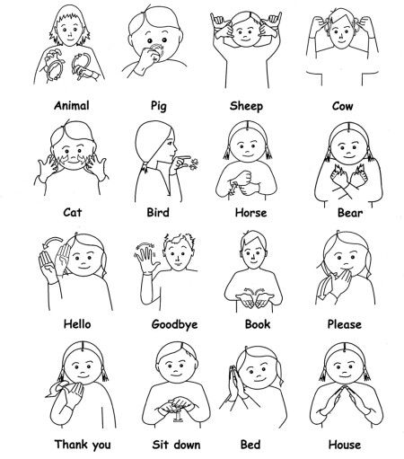 "Found on a board labeled for Australian Sign Language / AusLan (Note: this vocabulary may be from Australia, a language called AusLan, ie Australian (Sign) Language = Aus-Lan. It is not ASL / American Sign Language. This vocabulary is not mutually understood by American Sign users; it is literally a ""foreign language"".)"